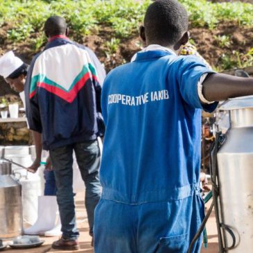COVID-19 Impact on Agricultural Cooperatives: Round One Brief